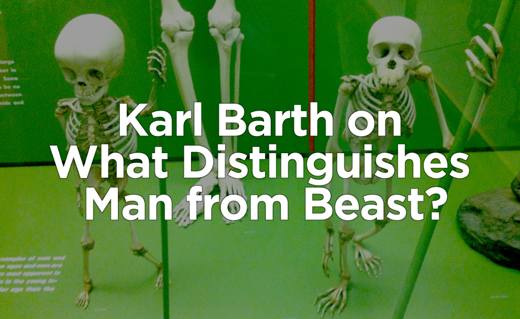 man-beast-barth